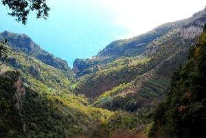 valleyoffurore